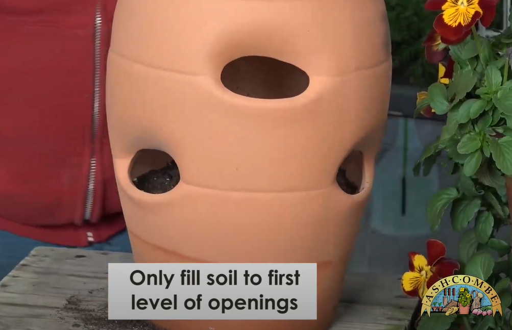 Fill to the first level
