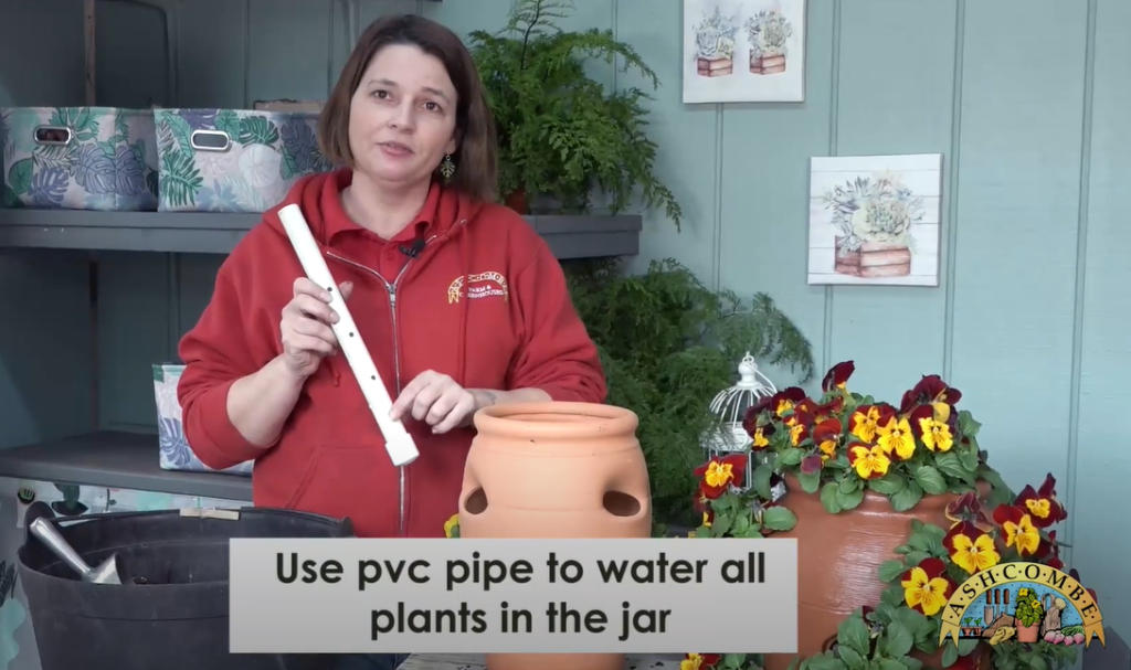 PVC Pipe to water all the plants