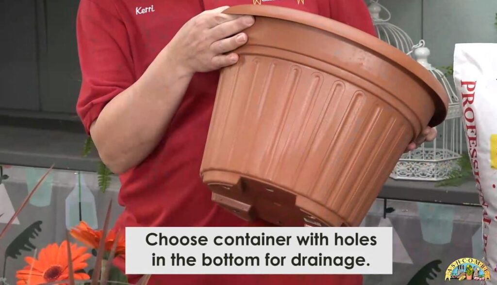 Choose a container with holes in the bottom for drainage
