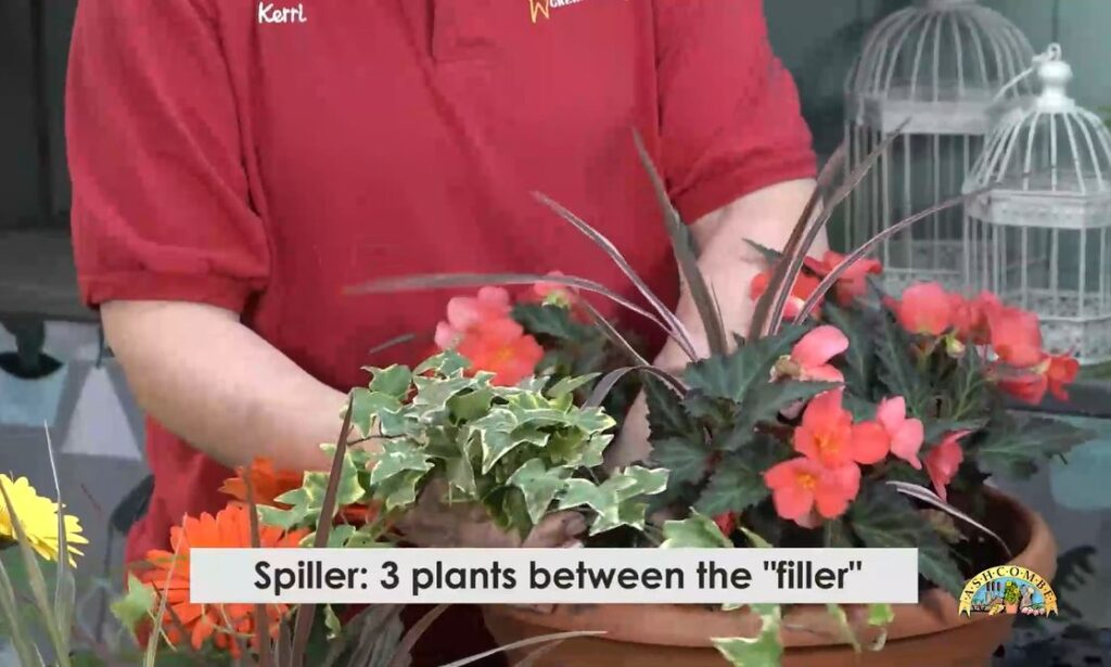 Plant spiller between your filler