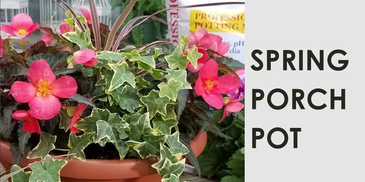 Intro-Photo-Spring-Porch-Pot