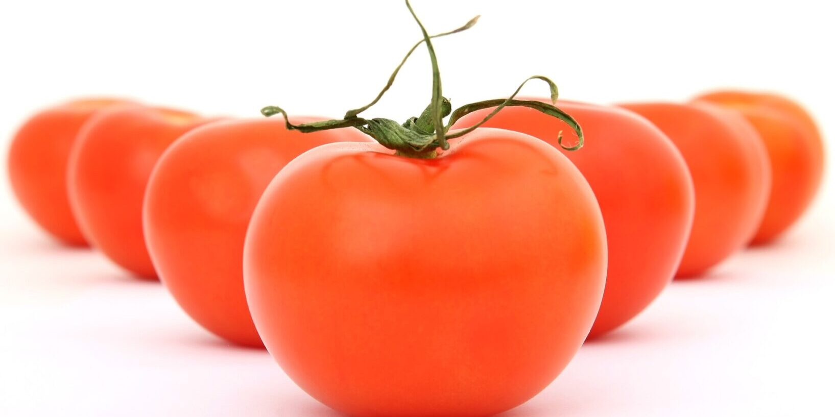 tomatoes-1239177_1920